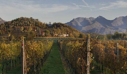 D o c g franciacorta mondo di vino - Erbusco in tavola 2017 ...